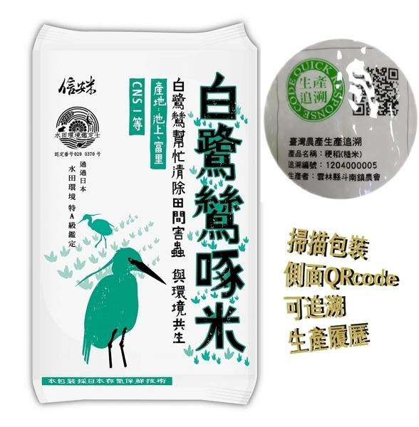 【大倉米鋪】白鷺鷥啄米 (花蓮富里)