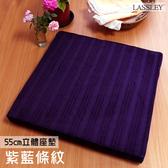 【LASSLEY】立體座墊-紫藍條紋(台灣製造55cm高6cm厚大方坐墊/和室椅墊/絨毛沙發墊)