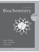 二手書博民逛書店《Biochemistry. Jeremy M. Berg, John L. Tymoczko, Lubert Stryer》 R2Y ISBN:1429276355