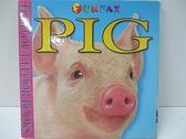 【書寶二手書T3/兒童文學_DQX】Pig_Pierre Caillou