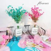小清新花瓶擺件客廳裝飾插花小花瓶 玻璃透明滿天星干花帶花瓶 全館免運限時八折
