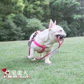 寵物狗狗牽引繩狗鏈子胸背心式小型中型犬泰迪遛狗繩  全店88折特惠
