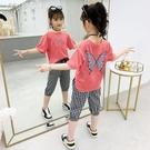 女童套裝女童純棉套裝T恤夏裝新款時髦韓板女孩七分褲休閒兒童兩件套 快速出貨