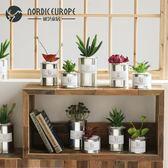 北歐金屬仿真多肉植物盆栽家居裝飾品擺件創意客廳辦公室擺設綠植 森活雜貨