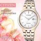 【公司貨有保障】CITIZEN Eco-Drive 簡約時尚光動能錶 32mm/星辰/EW2493-81B
