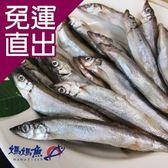 媽媽魚N. 預購-柳葉魚300g/盒,共2盒【免運直出】