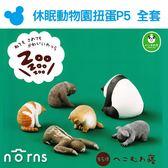 Norns【T-ARTS扭蛋 休眠動物園P5全套】低頭睡Zoo 日本轉蛋熊貓之穴 無尾熊樹懶猴子貓狗