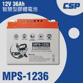 MPS1236智慧型膠體電池12V36Ah /可自行改接頭 12V電器充電 攤販 露營 釣魚 海釣 船釣