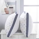 枕頭雙人不塌陷枕芯一對裝防螨可水洗家用防螨蟲枕頭芯高枕不變形 -享家生活館