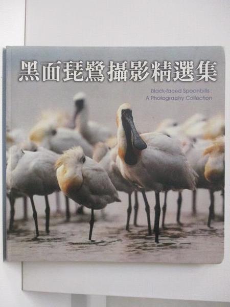 【書寶二手書T1/攝影_JP5】黑面琵鷺攝影精選集_民87