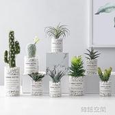多肉綠植物仿真擺件裝飾假花仙人掌北歐ins風辦公桌面創意小盆栽