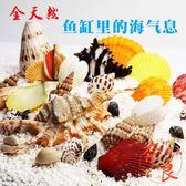魚缸裝飾貝殼天然海螺貝殼魚缸造景造景水族箱擺件【奈良優品】