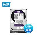 威騰 WD 紫標 3.5吋 1TB 監控...