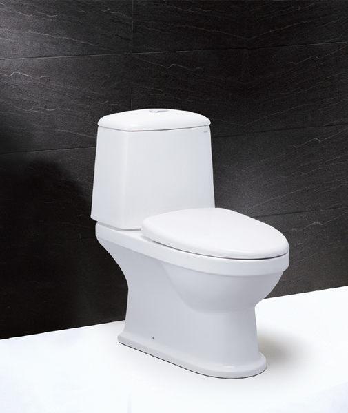 《修易生活館》 凱撒 衛浴 CAESAR CF1530 二段式羅馬通馬桶