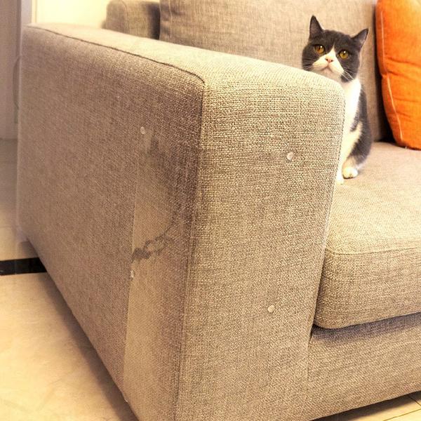 沙發床鋪防貓抓貼 4片裝 M號 47x15cm 家具保護貼 耐磨防水貼【ZI0214】《約翰家庭百貨