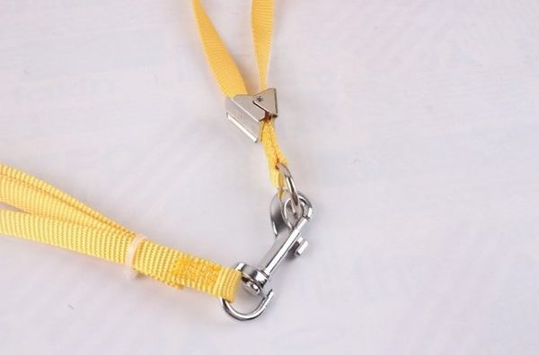 *WANG*寵物花朵胸背袋+牽繩 隨機出色