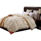 被子冬被空調被太空被芯加厚保暖雙人單人學生宿舍棉被 黛尼時尚精品