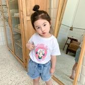 女童短袖T恤夏裝2020新款嬰兒童純棉半袖小寶寶洋氣夏季韓版上衣
