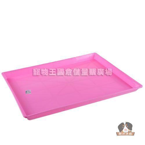 【寵物王國】3尺塑膠底盤(C042)