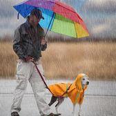 狗狗雨衣金毛薩摩中型犬雨披泰迪貴賓博美小型犬防水服狗狗衣服-享家生活館