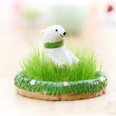 CARMO小動物草坪辦公室種植盆栽(4款)【B07001】