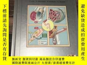 二手書博民逛書店Clinical罕見Manual of Sexual Medicine: Sexual Dysfunctions