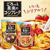 日本 Nissin 日清 綜合果實玉米片 200g 玉米片 果實玉米片 早餐 麥片 水果玉米脆片 玉米脆片