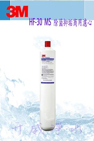限量特價[全省免運費]3M HF-30 MS高流量長效型-專用濾心【處理水量52,996公升】