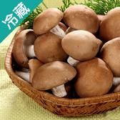 【台灣】埔里特級鮮香菇1包(300g±5%/包)【愛買冷藏】