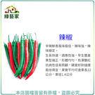 【綠藝家】大包裝G02.辣椒(珍辣)種子1.15克