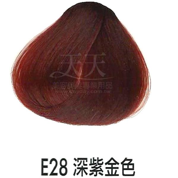 【專業推薦】耐婷 亮彩染髮劑 E-28 深紫金色 60g [15412]