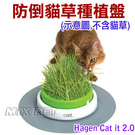 ◆MIX米克斯◆Hagen Catit 2.0.貓草種植盤(不含貓草)31610,專為貓咪設計,還可另加購週邊配件哦~