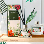 韓國 cocod'or 夏威夷風情擴香瓶 200ml(基本款) 夏季款 擴香 香氛 芳香 香氛劑 香氛 擴香瓶 cocodor
