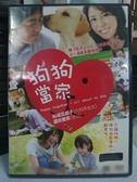 挖寶二手片-N06-079-正版DVD-日片【狗狗當家】-松嶋菜菜子 蘆田愛菜(直購價)