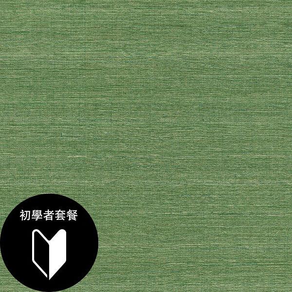 綠色 素色 rasch(德國壁紙) 2020 / 528862+施工道具套餐