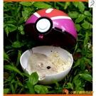 溜倉鼠外帶包寵物球窩神奇寶貝球外出倉鼠玩具精靈球【小獅子】