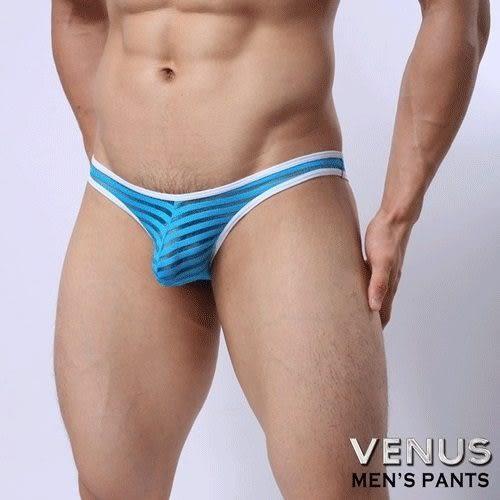 情趣用品 內褲 送潤滑液VENUS 低腰性感 透明 囊袋款 三角褲 藍色 T048 男性情趣內褲