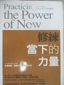 【書寶二手書T5/心靈成長_H4E】修練當下的力量_張德芬, 艾克哈特.托勒