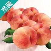 日本和歌山水蜜桃 13 粒/箱【愛買冷藏】