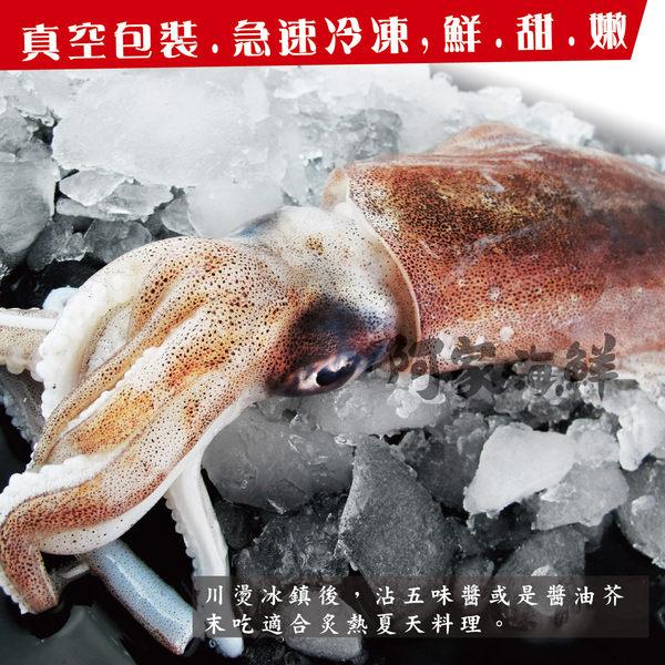 超鮮活凍軟絲 520g±10%/隻