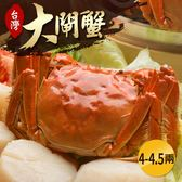 台灣珍稀大閘蟹*1隻組(4-4.5兩/隻)-死蟹包退