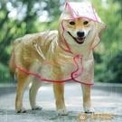 透明狗狗雨衣大型中型犬薩摩耶泰迪比熊金毛防水寵物衣服大狗雨披【小獅子】