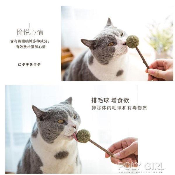 貓咪玩具用品貓薄荷球棒棒糖逗貓棒磨牙潔齒木天蓼貓草貓咪零食 polygirl