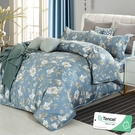 雙人 152x188cm 頂級100%天絲 40s400針紗 床包四件組(兩用被套)-雪融白茶 【金大器】