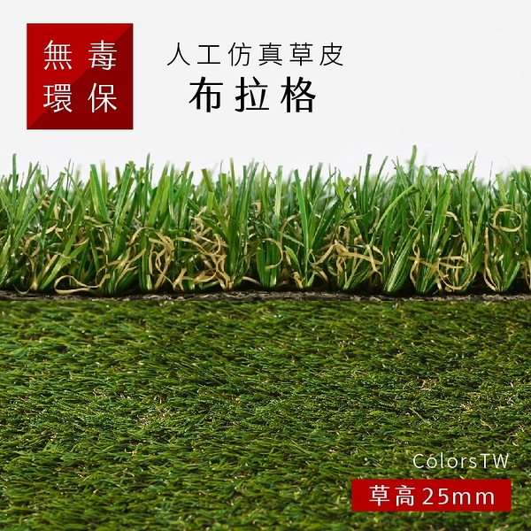 人工仿真草皮 【布拉格】 尺寸1X1m 人工草皮 人造草皮 拼接 園藝 景觀
