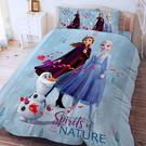 床包被套組 / 雙人加大【冰雪奇緣-秋日之森系列】含兩件枕套 高密度磨毛 戀家小舖ABF312