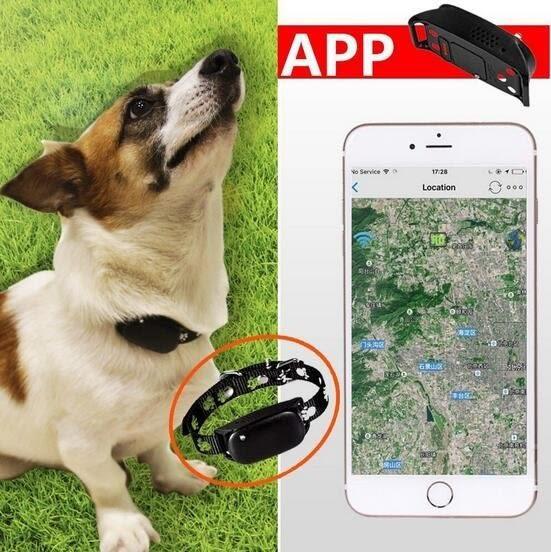 防水寵物定位器 犬貓GPS/WIFI定位追蹤器【潮咖範兒】