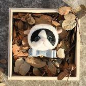 羊毛氈 圈圈木戳樂材料包小貓咪頭喵咪貓頭胸針喵星人手工DIY 全館免運八八折