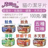 *KING WANG*【摩爾思貓用潔牙片】 薄荷/鮮蝦干貝/鮭魚/鮪魚/木天蓼 100克/罐