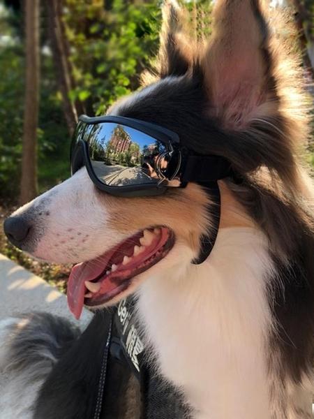 寵物眼鏡 寵物眼鏡太陽眼鏡狗墨鏡防風法斗泰迪柯基模特拍照道具狗狗護目鏡 米家